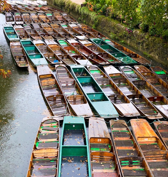 Punts at rest.